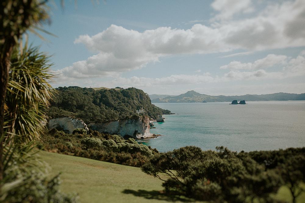 NZblog-1-3