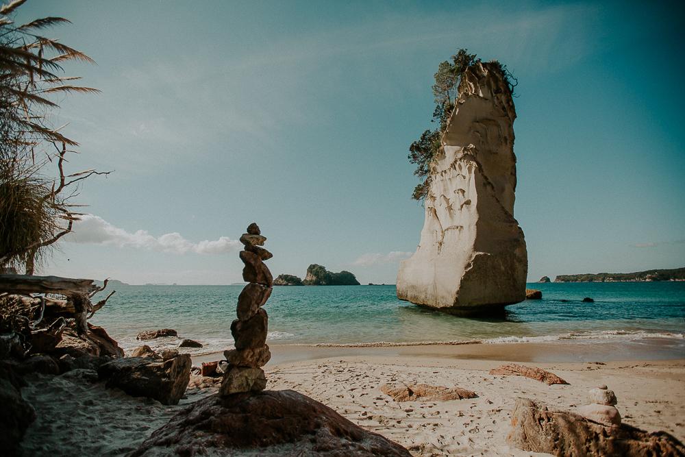 NZblog-1-30