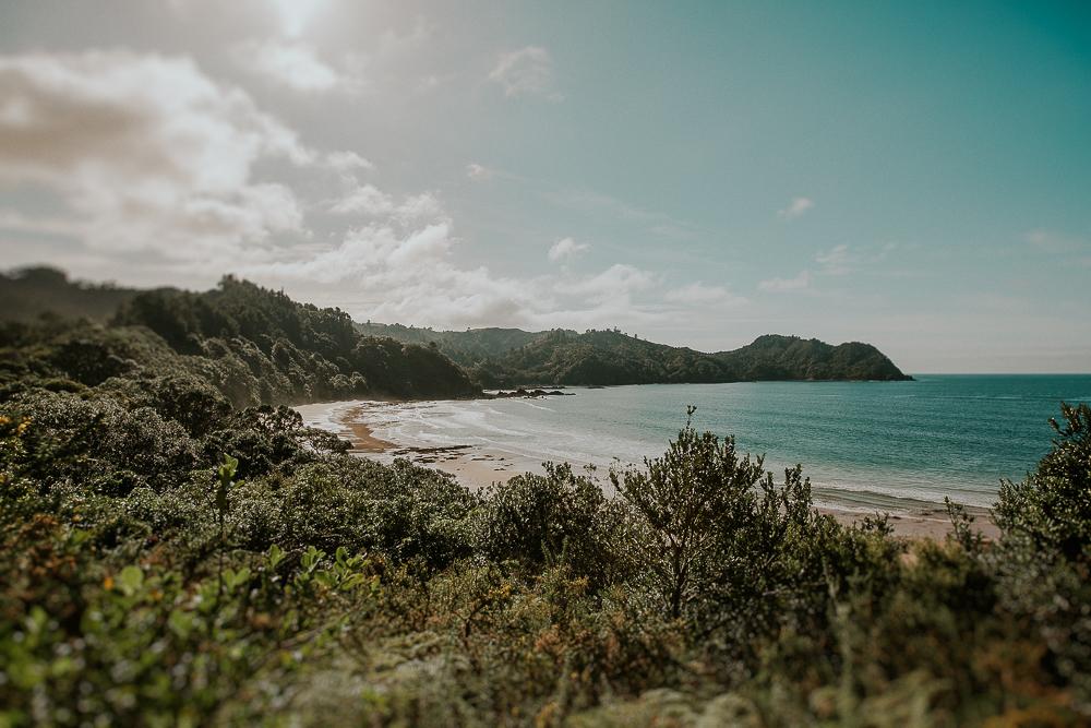 NZblog-1-46