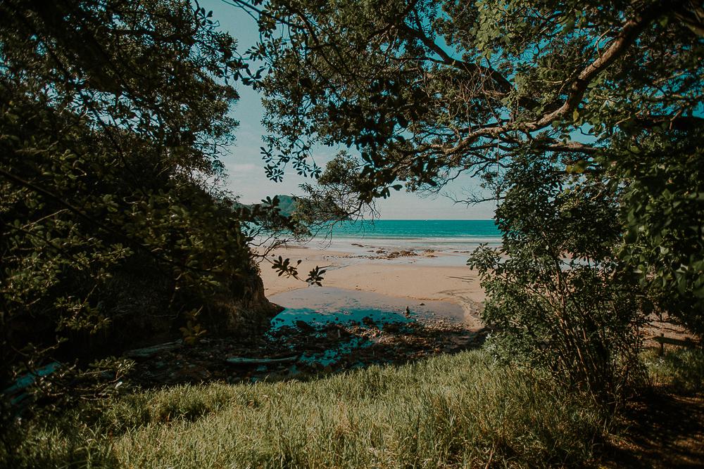 NZblog-1-47