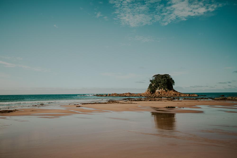 NZblog-1-49